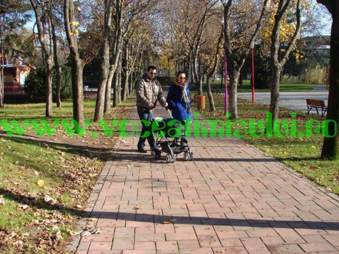 parcul-copiilor-timisoara-13