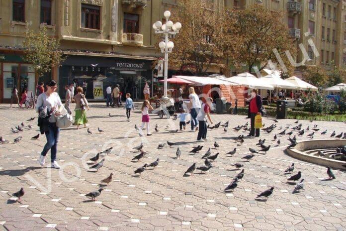 piata-victoriei-porumbei