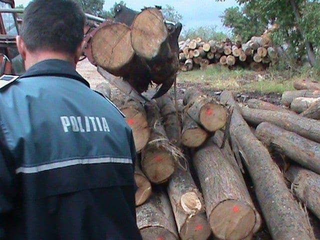 politia-lemn