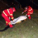 Un-timişorean-şi-a-găsit-sfârşitul-la-pescuit-pe-râul-Bega04