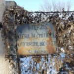 Primăria-Timişoara-nu-mai-e-de-acord-cu-mansardele-de-pe-blocuri-dar-permite-construcţii-de-vile-în-cimitire09