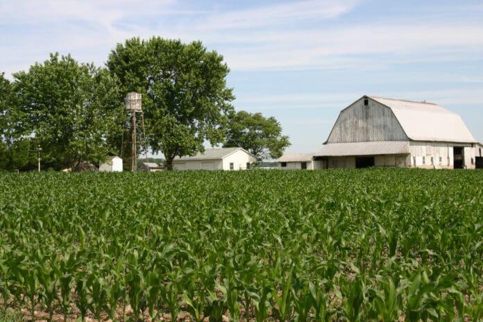 ferma-agricultura