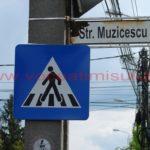 strada-Gavril-Muzicescu-3