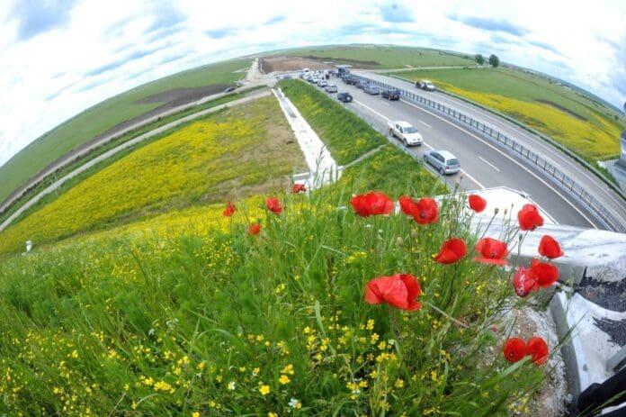 autostrada-Timisoara-Lugoj-la-Sanovita-07