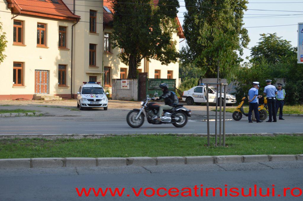 Actiune-Politia-Rutiera-Timisoara-02