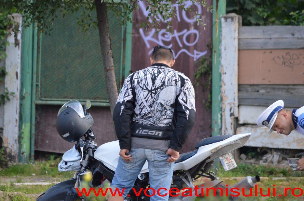 Actiune-Politia-Rutiera-Timisoara-08