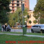 Actiune-Politia-Rutiera-Timisoara-21