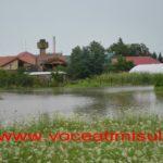 inundatii-gataia-sipet-2014-10