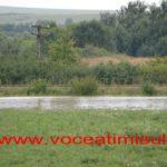 inundatii-gataia-sipet-2014-5