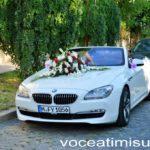 Nuntă-țigănească-la-Timișoara31