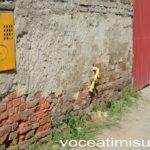 Un-șofer-de-microbuz-la-un-pas-să-ARUNCE-ÎN-AER-un-cartier-al-Timișoarei03