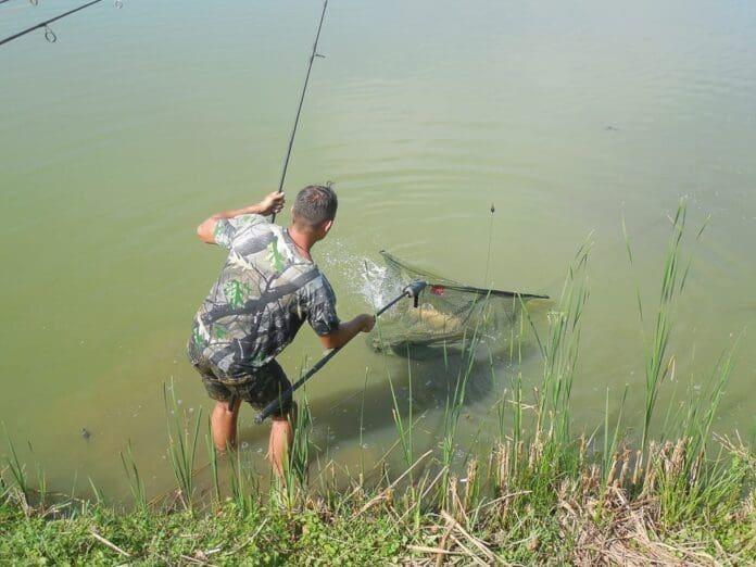 Vărdia-printre-ultimile-redute-bănăţene-ale-pescuitului-la-crap09