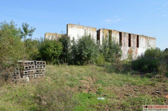 """Căminul Cultural din Stamora Română """"suge"""" zeci de mii de euro din bugetul comunei, deși NU EXISTĂ! FOTO/VIDEO, Vocea Timisului"""