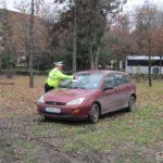 soferi-nesimtiti-parcati-pe-spatiul-verde-16