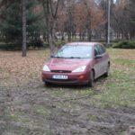 soferi-nesimtiti-parcati-pe-spatiul-verde-6
