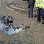 Accident-feroviar-Carani10