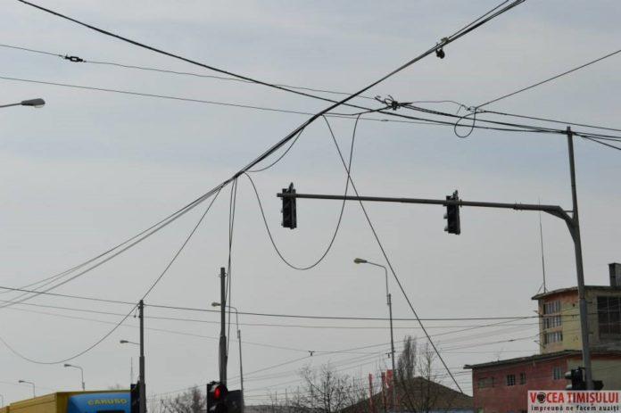 Timișoara-orașul-cablurilor4