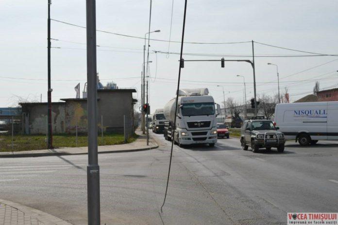 Timișoara-orașul-cablurilor5