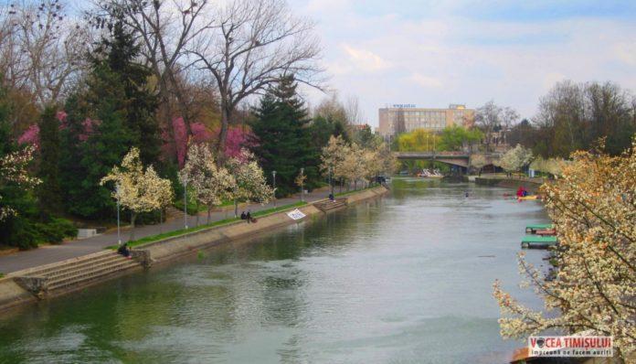 Canalul-Bega-Timisoara