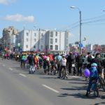 Verde-pentru-Biciclete12