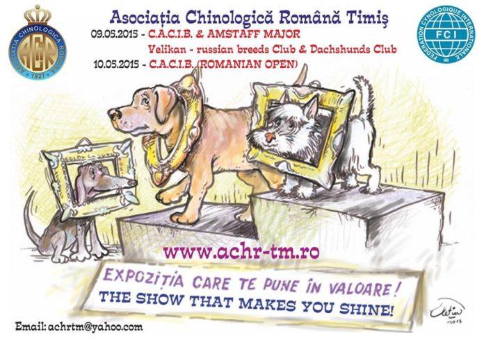 Cacib-expozitie-canina