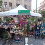 """Festivalul-florilor-""""Timfloralis""""-a-ajuns-la-ultima-zi5"""