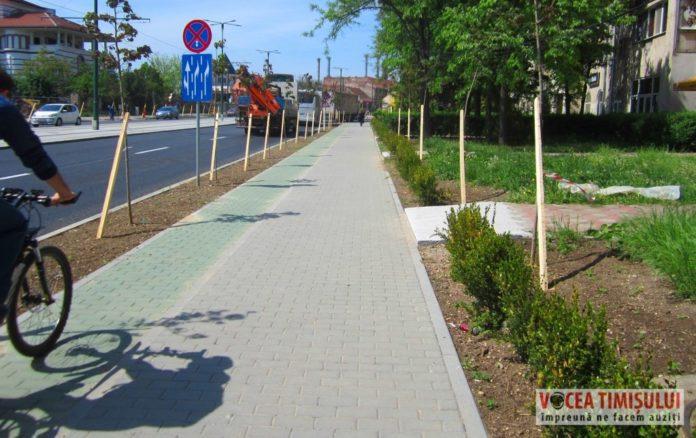 strada-patru-benzi-cu-pista-de-biciclete-si-copaci-plantati-Stefan-cel-Mare