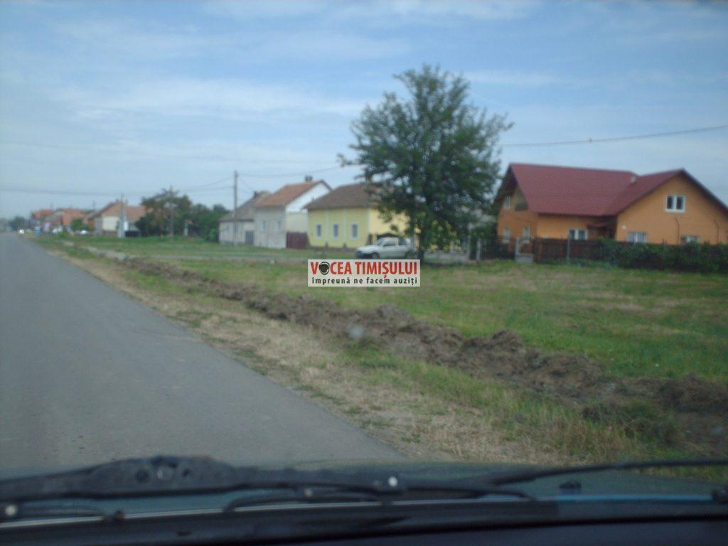 Misiune-imposibilă-la-Primăria-Sânnicolau-Mare-@04