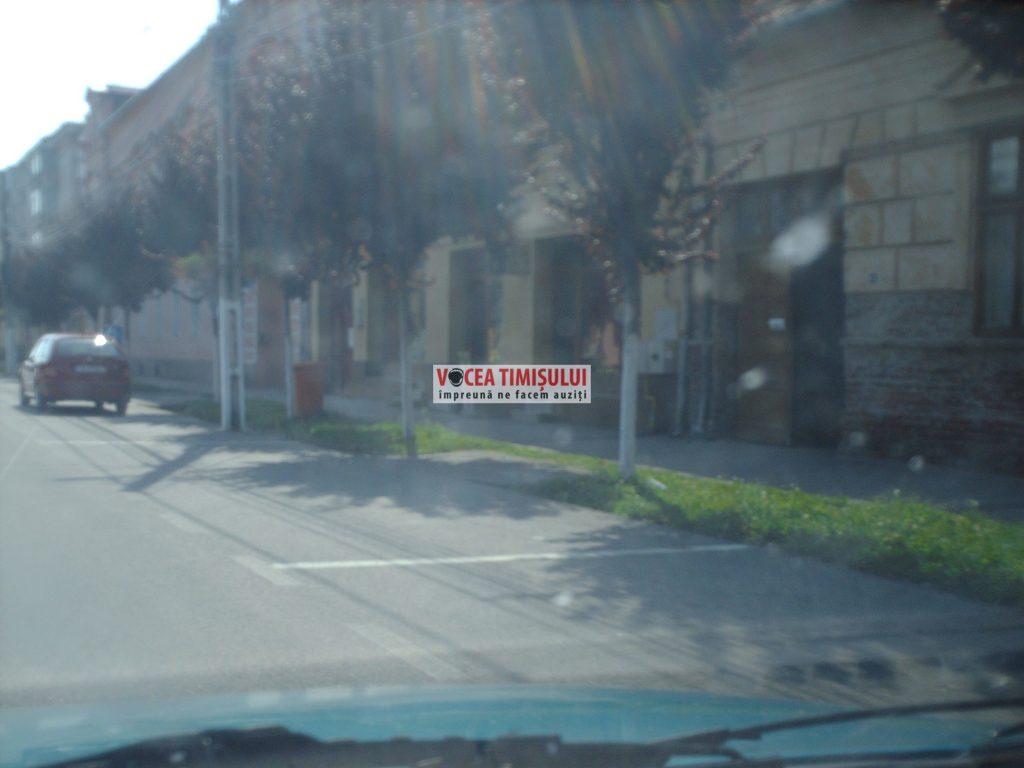 Misiune-imposibilă-la-Primăria-Sânnicolau-Mare-@11
