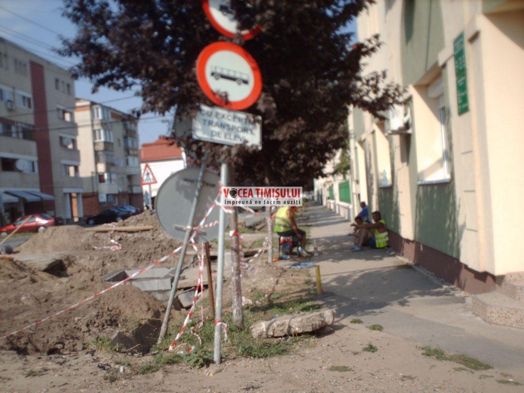 Misiune-imposibilă-la-Primăria-Sânnicolau-Mare-@12
