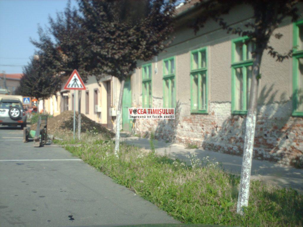 Misiune-imposibilă-la-Primăria-Sânnicolau-Mare-@14