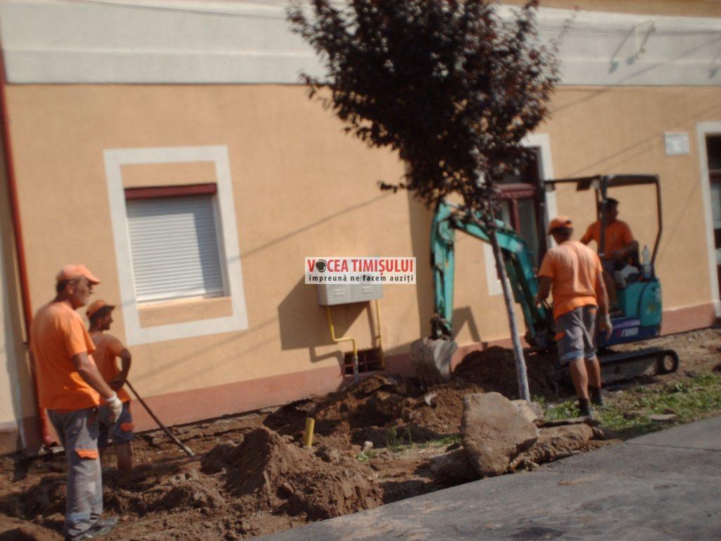 Misiune-imposibilă-la-Primăria-Sânnicolau-Mare-@16