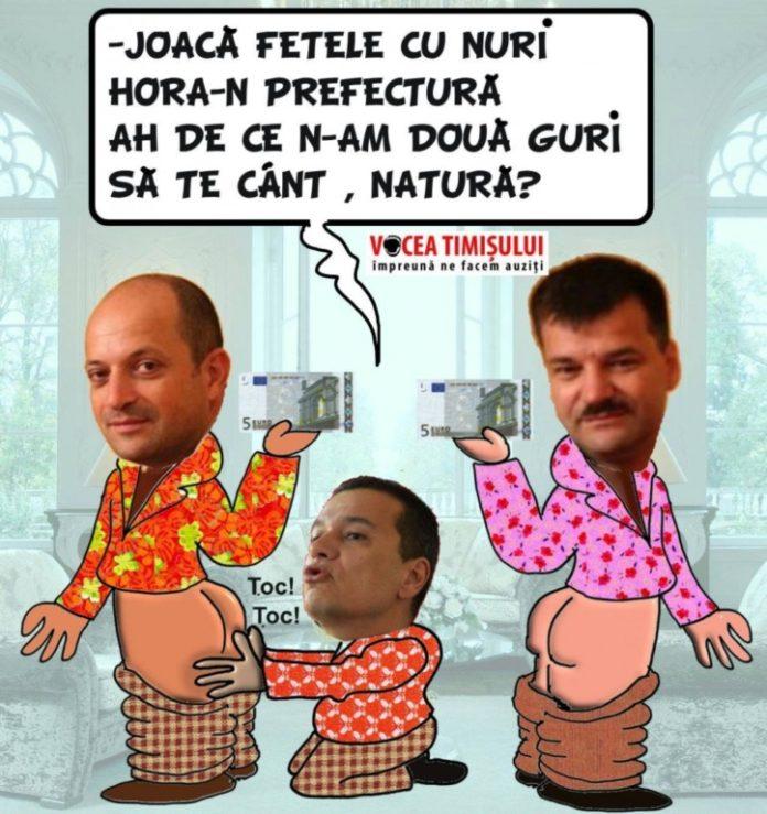 Grindeanu-si-Fratii-Cristescu