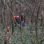 Un-bărbat-a-fost-găsit-spânzurat-de-un-copac-la-Pădurea-Verde-1