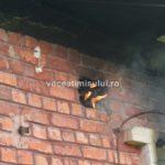 Incendiu-la-o-clădire-dezafectată09