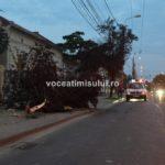accident-grav-pe-strada-Cluj-din-Timisoara09