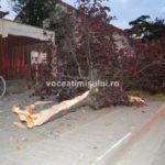 accident-grav-pe-strada-Cluj-din-Timisoara12