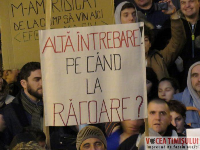 Proteste-Timisoara24