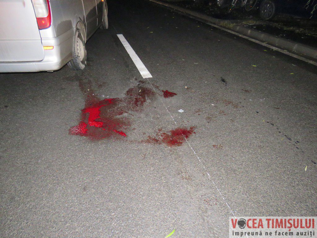 Accident-mortal-Calea-Buziasului07