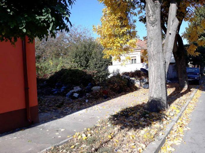 teren-neigienizat-gunoaie-deseuri-abandonate
