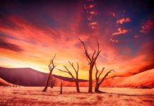 Schimbările climatice