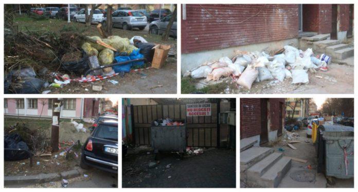 Si-angajatii-firmelor-din-Complexul-Studentesc-arunca-gunoiul-pe-unde-apuca-la-Timisoara-1
