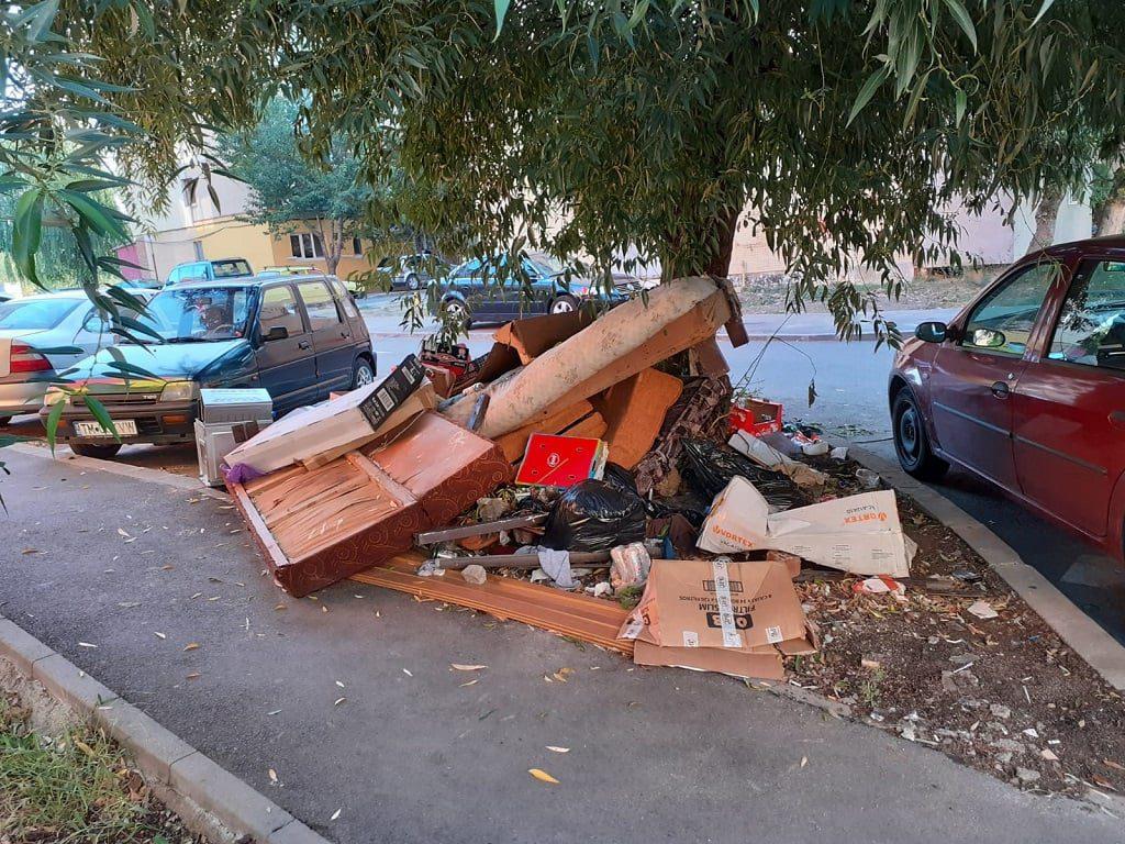 gunoi-pe-strada-in-Timisoara