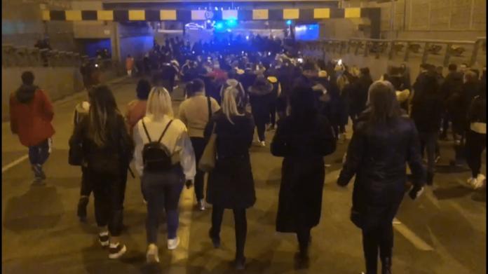 Dansând cu lupii! Lupta cu personaje imaginare și fantastice, închipuite de agitatori de serviciu, aruncă Timișoara pe marginea prăpastiei 2