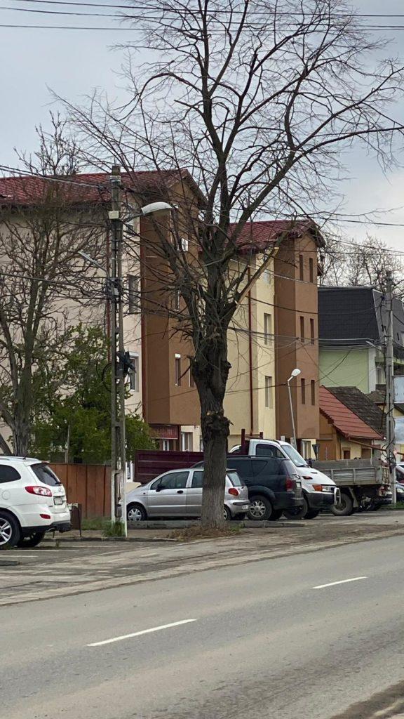 Toma Distrugătorul! Dezvoltatorul Radu Burescu, înger și demon pentru cooperativa imobiliară de pe raza comunei Giroc 10